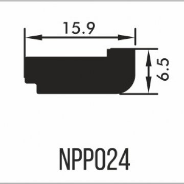 NPP024